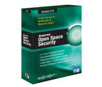 Kaspersky Business Space Security 1-10 user