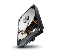 "SEAGATE ST1000NM0023 Constellation ES.3 1TB 7200 RPM 128MB Cache SAS 6Gb/s 3.5"" Enterprise Internal Hard Drive"